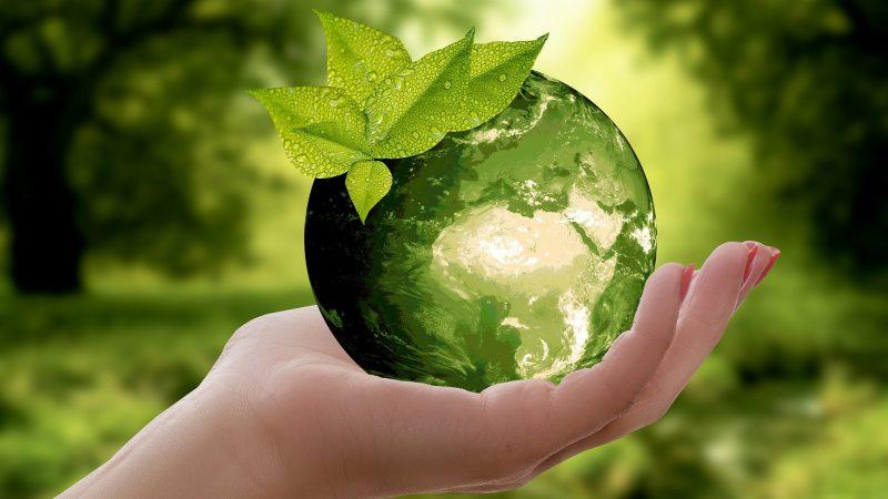 Zo word jij milieuvriendelijker