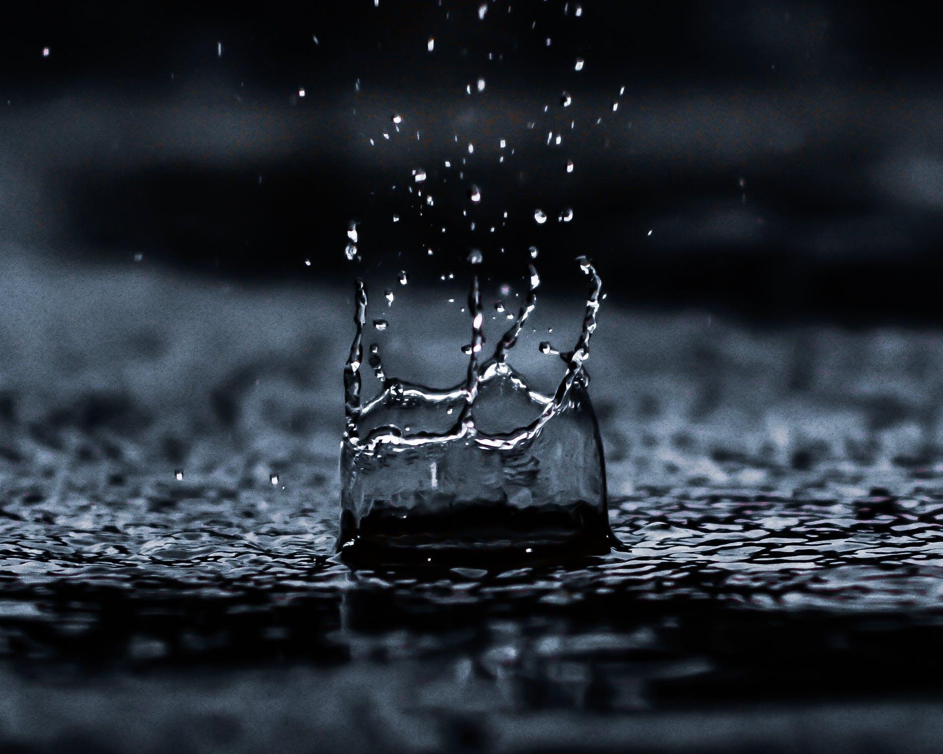 Gefilterd regenwater, wat kun je ermee?